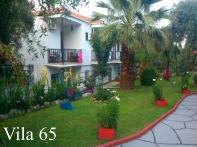 Thassos 65